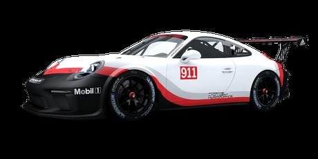 Porsche Motorsport - #911