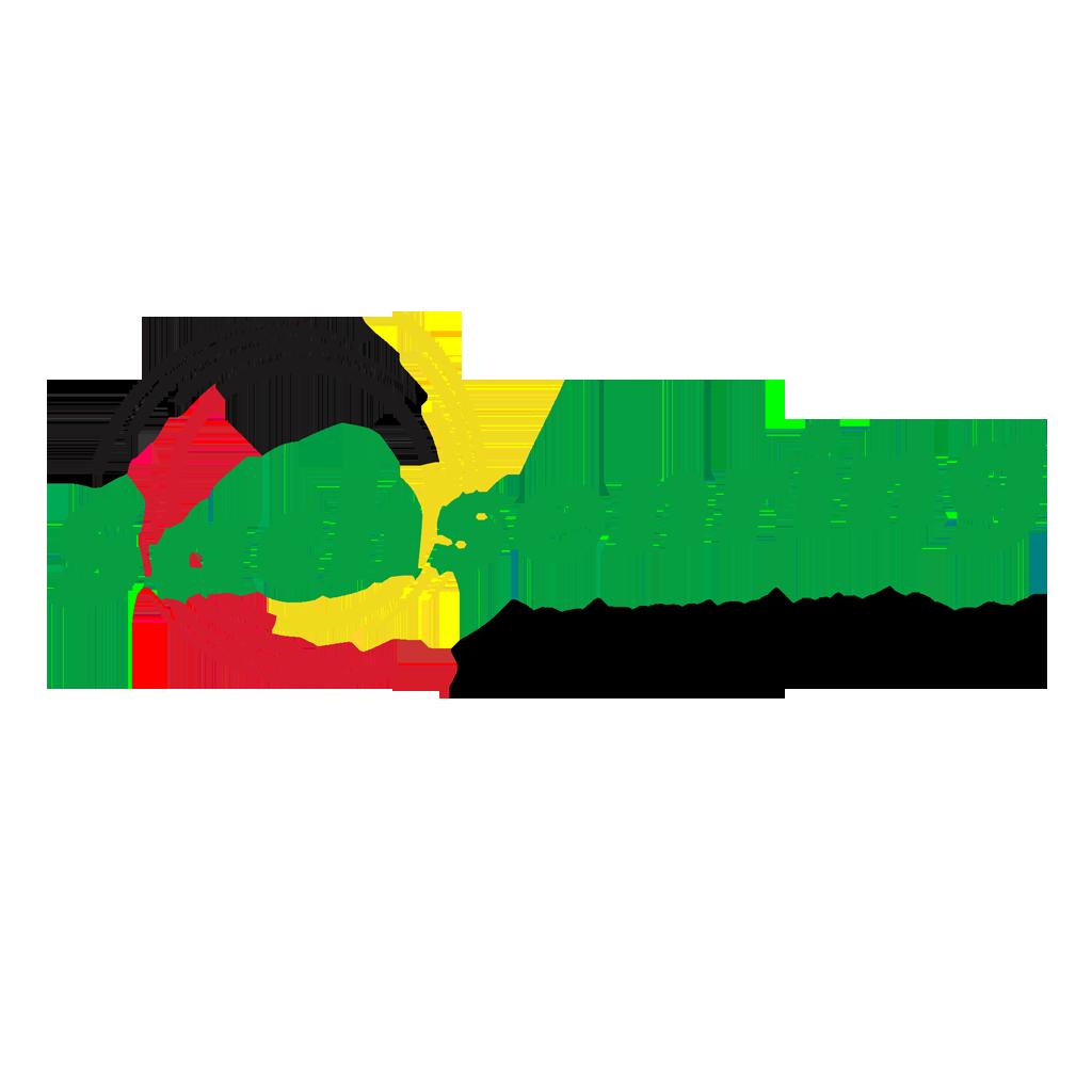 Risultati immagini per circuito sachsenring logo