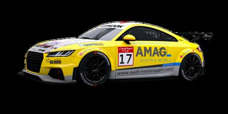Audi Sport - #17